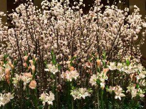 帝国ホテルエントランスの生花